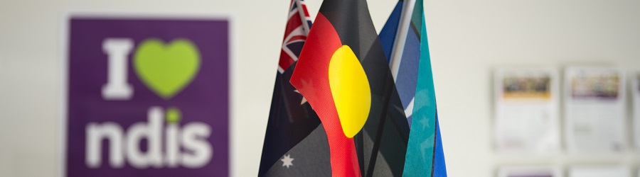"A set of flags, including the Aboriginal flag at the front, with an ""I love NDIS"" poster in the background."