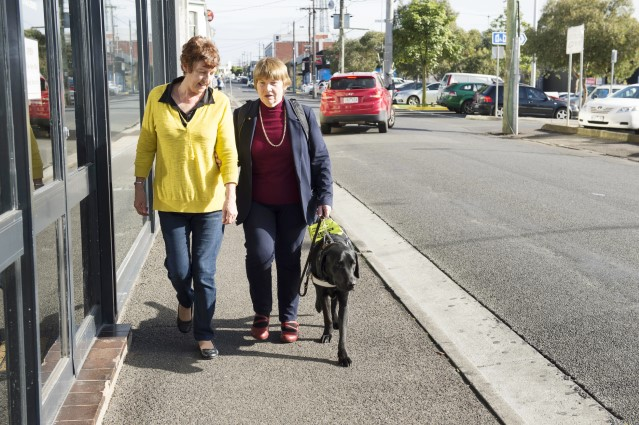 Linda walking with a guide dog and her friend